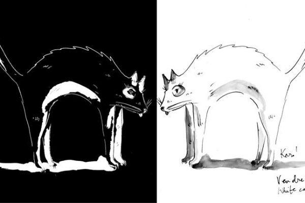 Dessin_du_Vendredi_KaroPauwels_illustration_Vendredi13_cat