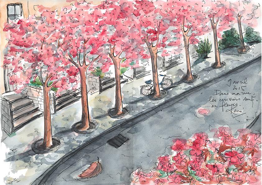 Dessin_du_Vendredi-cherryblossom_KaroPauwels_illustration_130415
